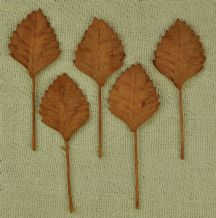 COOPER BROWN AUTUMN Oval Rhamboidal (25mm) Mulberry Paper Leaves